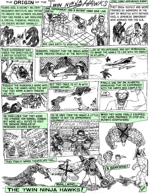 Origin of the Ninja Hawks